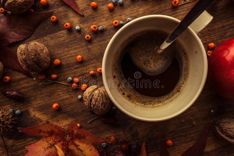 Hot coffee drink for cold autumn days. Top view flat lay of coffee cup on the table decorated with autumnal fruit and dry leaves stock photos