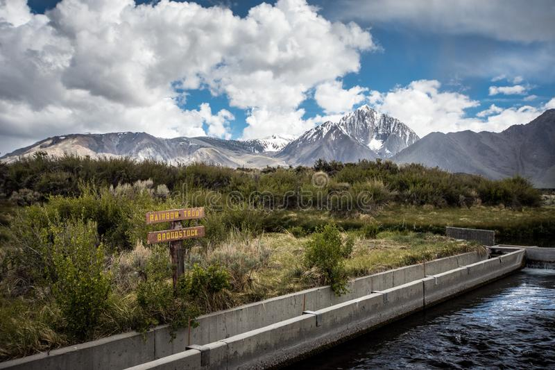 Hot Creek Fish Hatchery in Mammoth Lakes breeds Rainbow Trout, which are stocked in nearby lakes for fishing stock photography