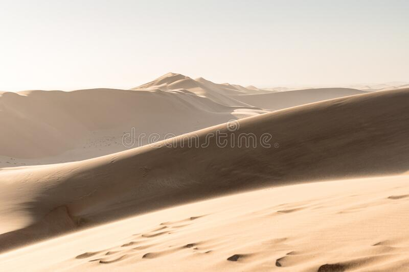Hot day on Dune 7. Namibia royalty free stock photos