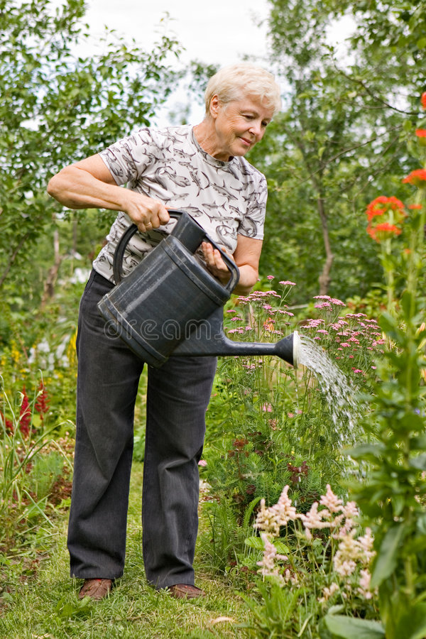 Hot day on a summer residence royalty free stock photo