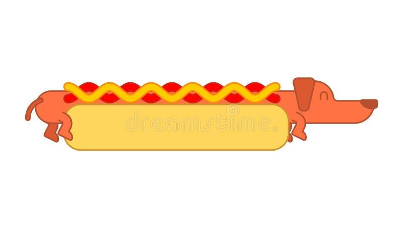 Hot dog babeczka i jamnik Ketchup i musztarda Fasta food zwierzę domowe ilustracja wektor