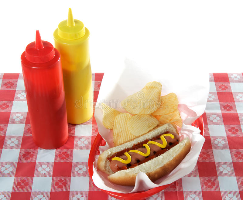 Download Hot Dog in Basket stock image. Image of frank, grill - 19287725