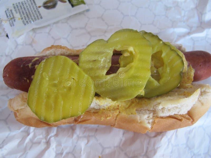 Hot dog caricato all'ambito immagini stock