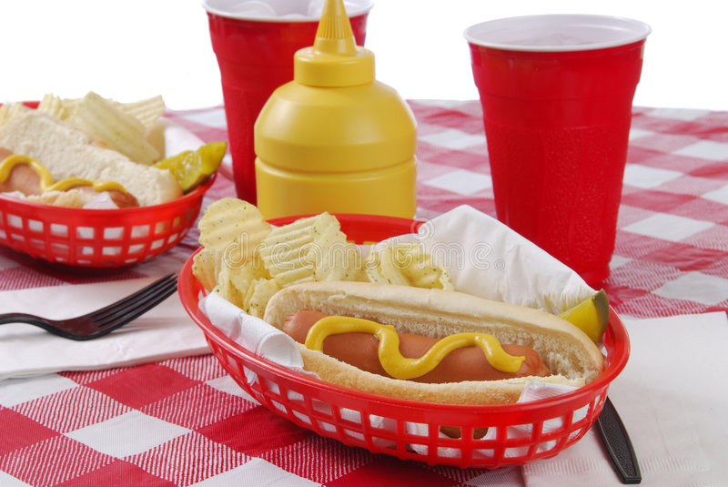 Download Hot Dog and Chips stock photo. Image of mustard, potato - 3956982