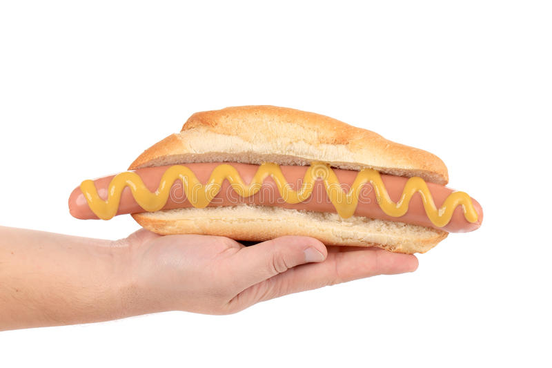 Hot dog de prise de main grand. image stock