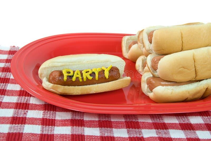 Hot dog del partito di estate immagini stock libere da diritti