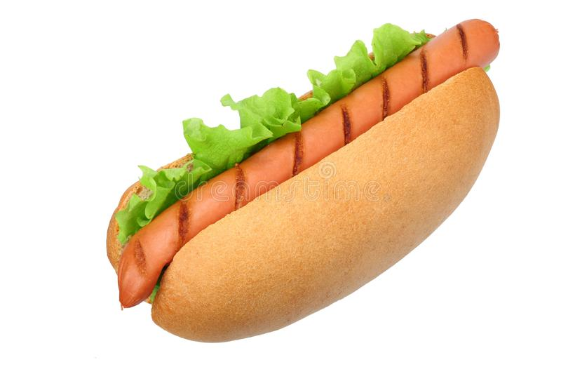 Hot dog grill with lettuce isolated on white background. fast food royalty free stock image