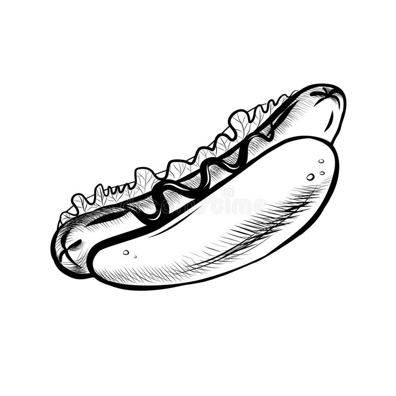 Hot Dog vector illustration