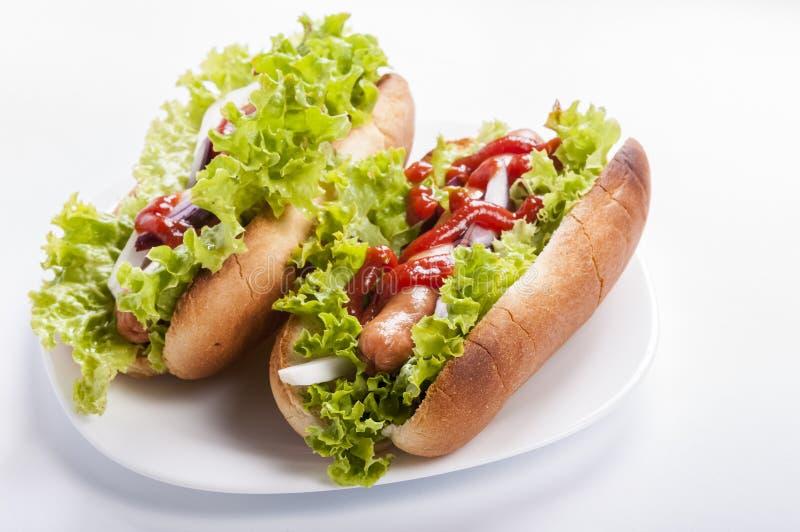 hot-dog stock photos