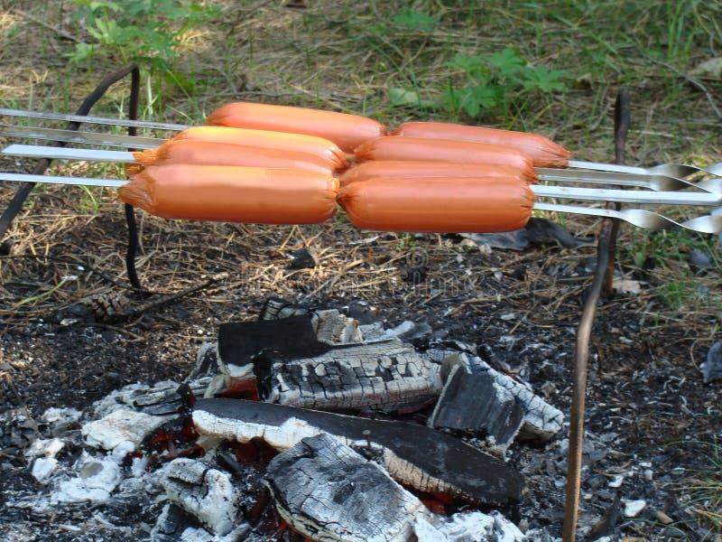 Hot dog lub wieners nad ogniskiem fotografia stock
