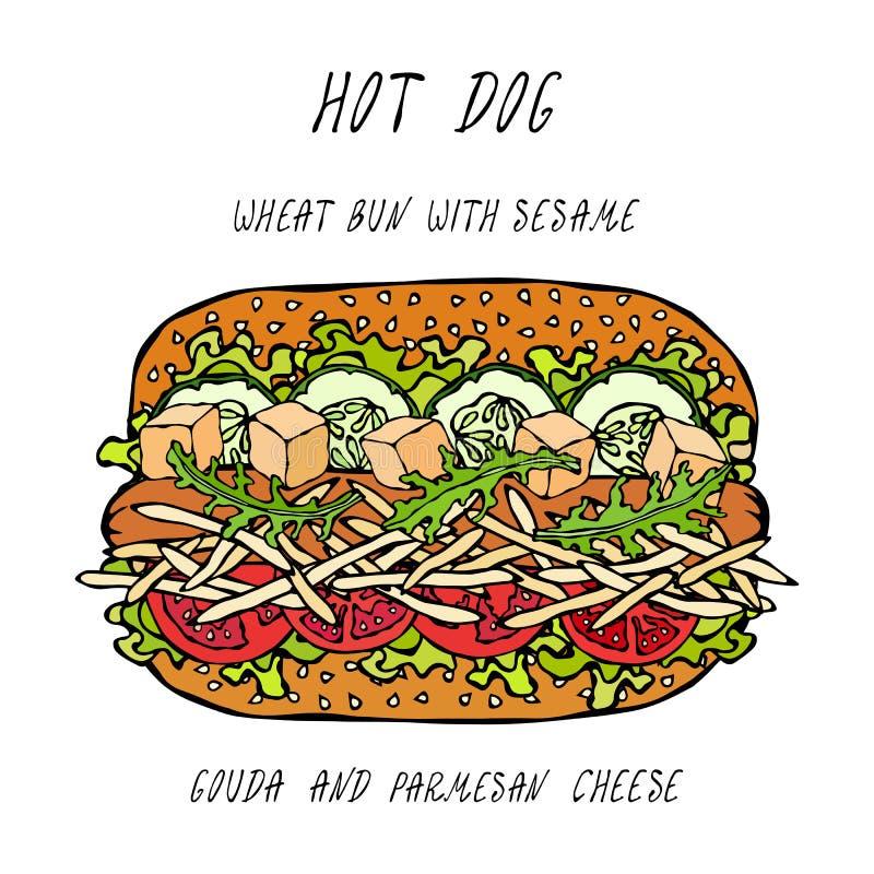 Hot Dog na Pszenicznej babeczce z Sezamowymi ziarnami z Gouda i Chedder serem, pomidor, sałaty sałatka Fast food kolekcja Realist royalty ilustracja