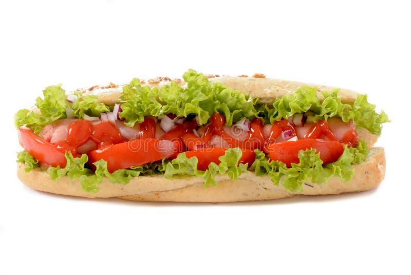 Hot dog odizolowywający na bielu zdjęcie stock