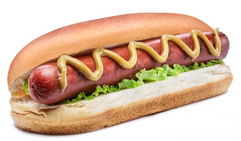 Hot dog - piec na grillu kiełbasa w babeczce z kumberlandami odizolowywającymi na białym tle zdjęcia royalty free