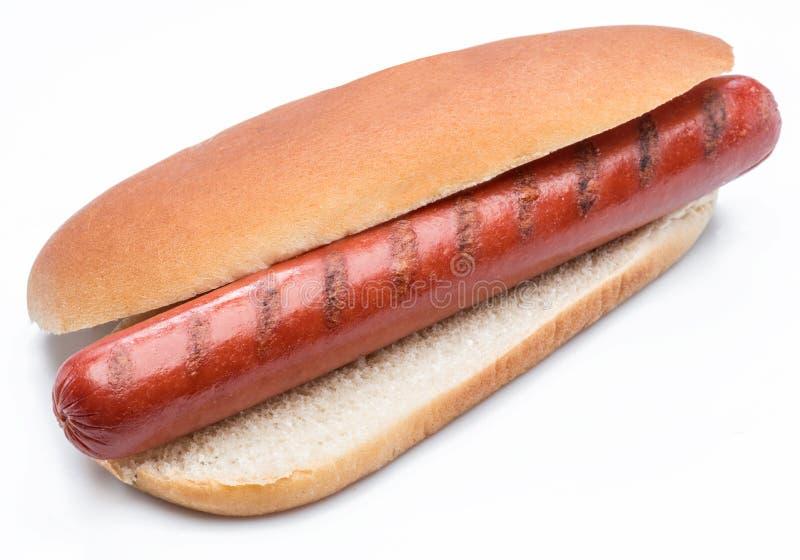 Hot dog - salsiccia arrostita in un panino isolato su fondo bianco immagini stock