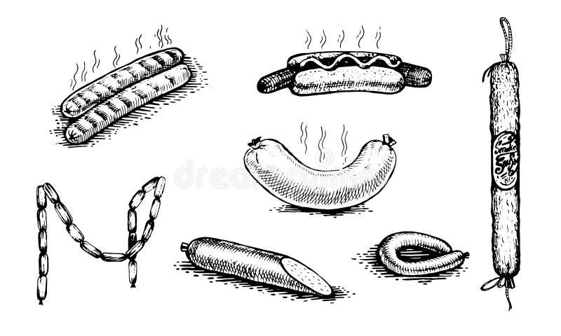 Hot dog, salsiccia, salame Metta dei modelli per progettazione royalty illustrazione gratis