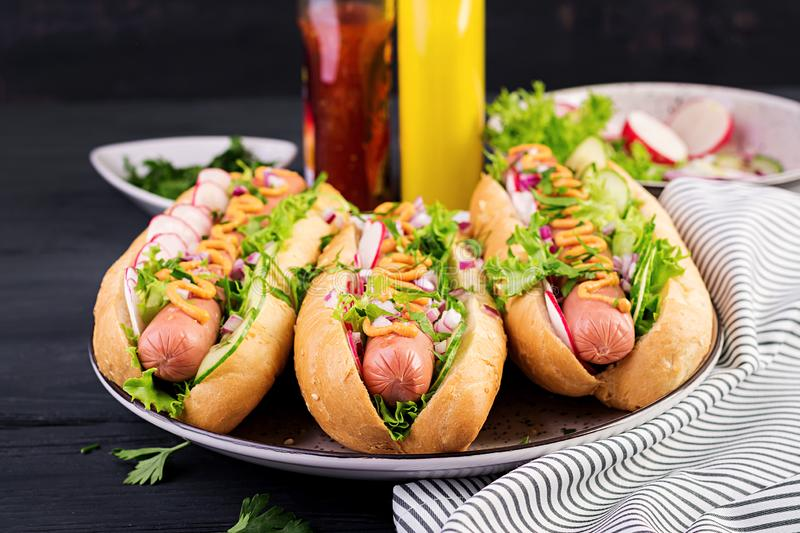 Hot dog with  sausage, cucumber, radish and lettuce on dark wooden background. stock photography