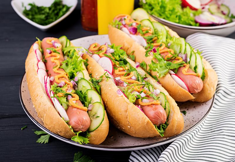 Hot dog with sausage, cucumber, radish and lettuce on dark wooden background. Hot dog with  sausage, cucumber, radish and lettuce on dark wooden background royalty free stock image