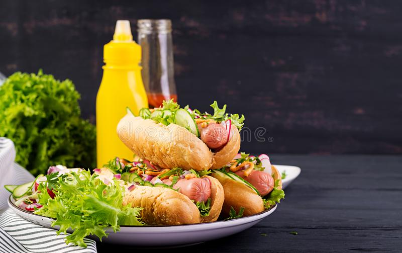 Hot dog with  sausage, cucumber, radish and lettuce on dark wooden background. Hot dog with sausage, cucumber, radish and lettuce on dark wooden background stock photography