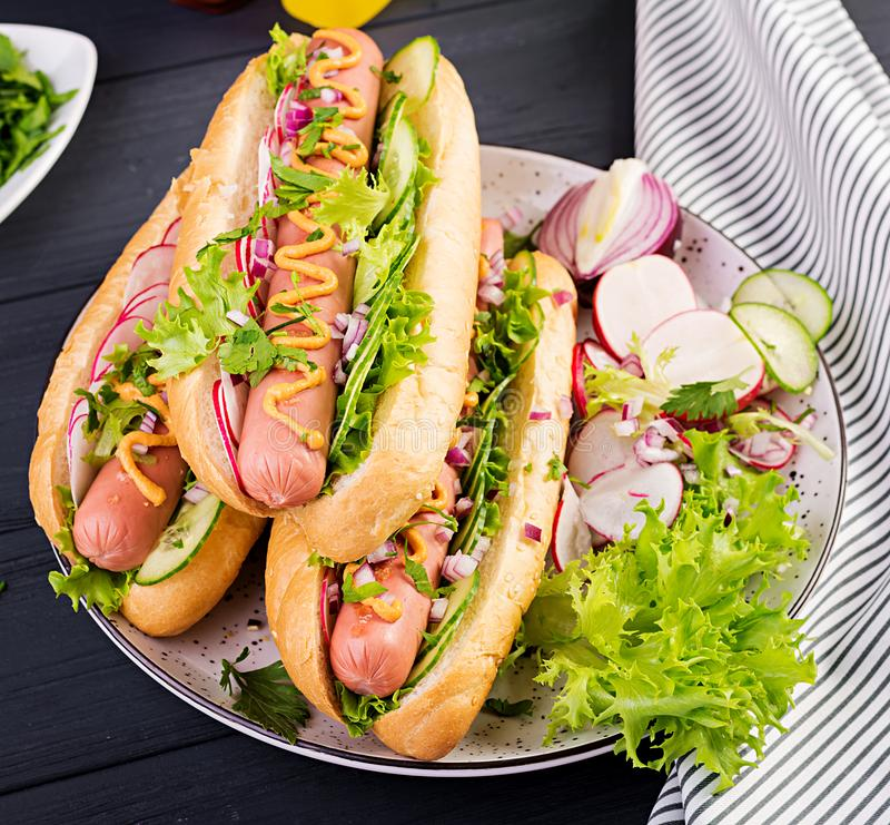 Hot dog with  sausage, cucumber, radish and lettuce on dark wooden background. Summer hotdog stock images