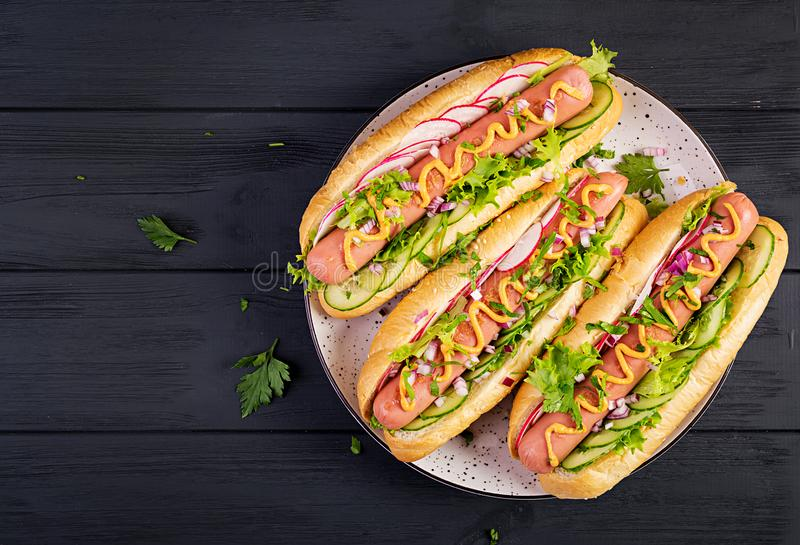Hot dog with sausage, cucumber, radish and lettuce on dark wooden background. Hot dog with  sausage, cucumber, radish and lettuce on dark wooden background royalty free stock photos