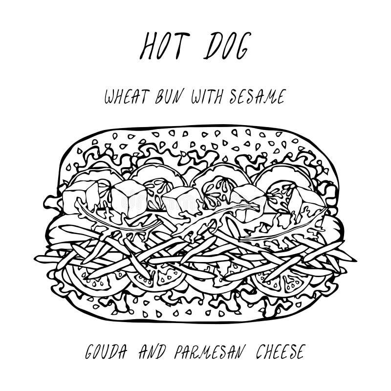 Hot-dog sur un petit pain de blé avec les graines de sésame, avec le Gouda et le fromage de Chedder, tomate, salade de laitue Col illustration de vecteur