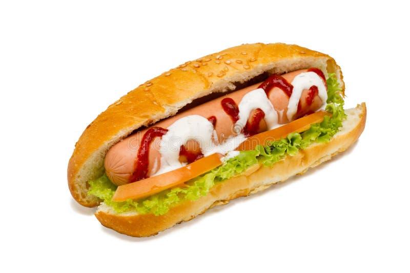 Hot-dog on a white background stock photo