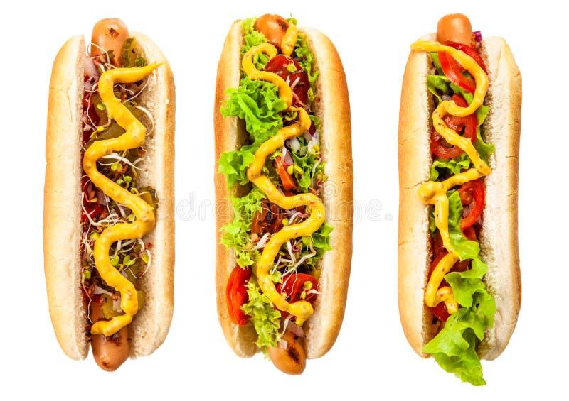 Hot dogs délicieux sur le fond blanc image stock