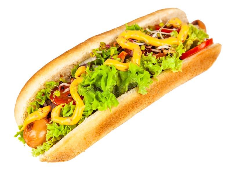Hot dogs d?licieux sur le fond blanc photo stock
