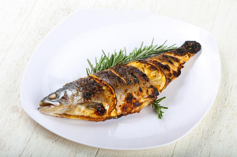 grilled trout stock photo