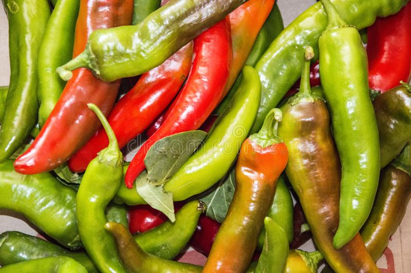 Hot green and red chili peppers royalty free stock images