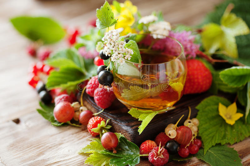 Hot herbal tea with fresh summer berries and herbs stock image