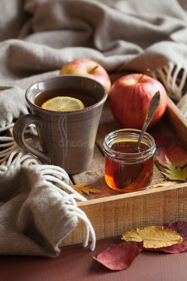 Hot lemon honey tea warming drink scarf cozy autumn leaves stock images