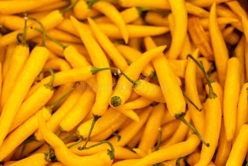 Hot orange pepper, Orange chili peppers, Heap Of Ripe Big yellow Peppers, chili background closeup royalty free stock photo