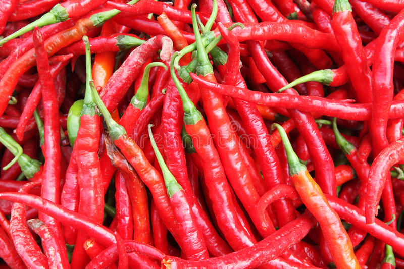 Hot Pepper Stock Image