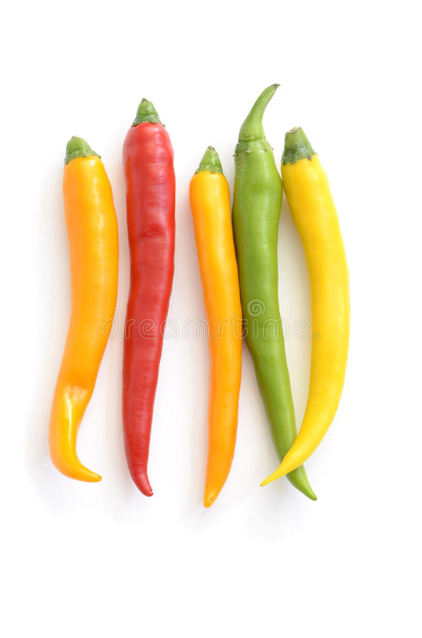 Hot peppers. On white background stock photography