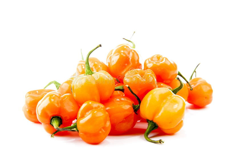 Hot peppers. Pimenta de Cheiro - Yellow Pepper royalty free stock image