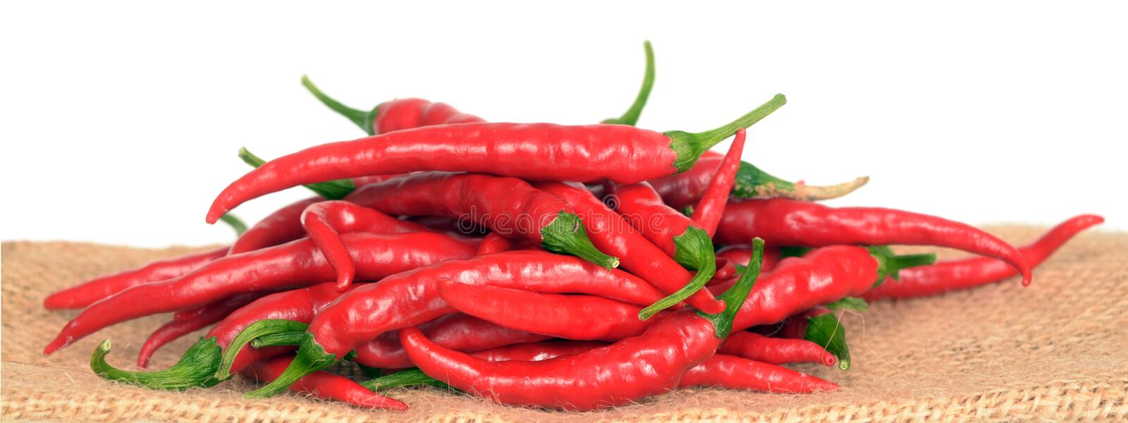 Cayenne pepper. Hot red cayenne pepper against white background royalty free stock images