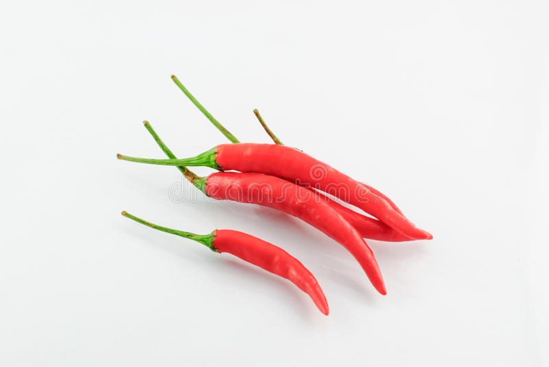 Hot red chili. Or chilli pepper isolated on white background royalty free stock images