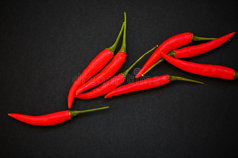Hot red pepper lies on a black background royalty free stock photos
