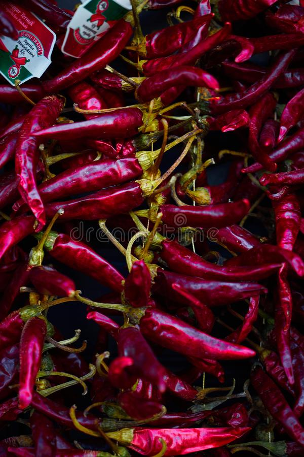 Free Hot Red Peppers Hanging On The Wall Royalty Free Stock Images - 142567159