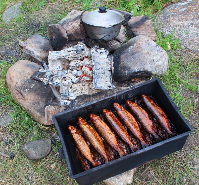 Hot smoked Omul stock photos