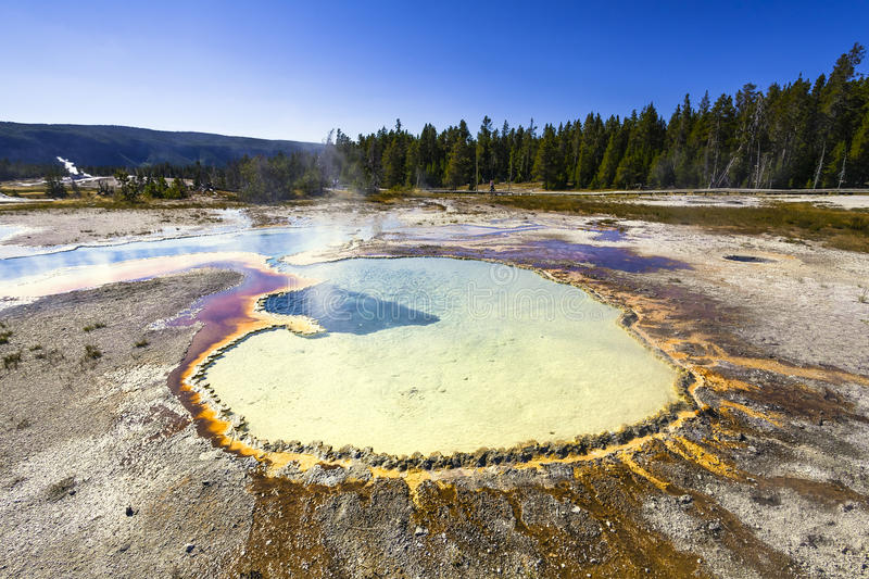 Download Hot spring stock photo. Image of landscape, plants, wyoming - 26804770