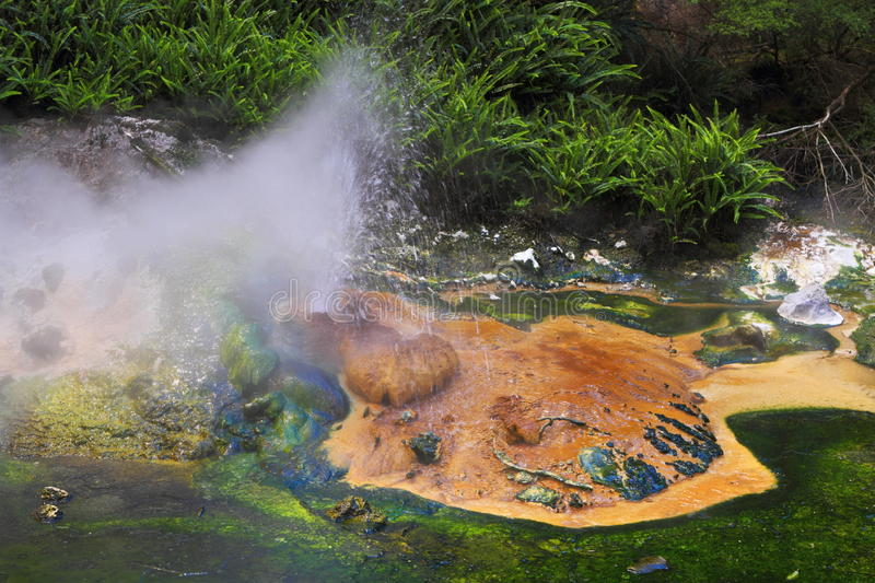 Hot spring crater. Colorful hot spring crater in Rotorua, New Zealand royalty free stock photo
