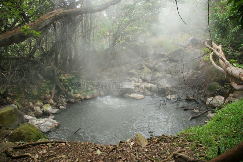 Hot Spring Pool - Rincon de la Vieja, Costa Rica royalty free stock photo