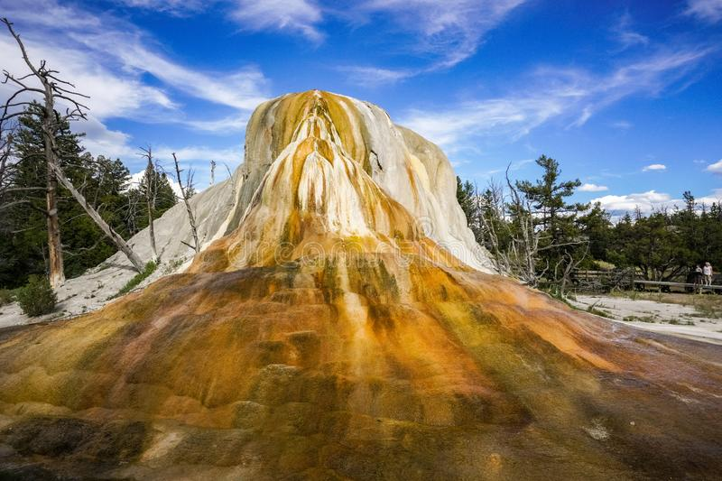 Hot spring on the upper terrace drive loop, Mammoth Hot Springs, Yellowstone National Park, Wyoming royalty free stock images