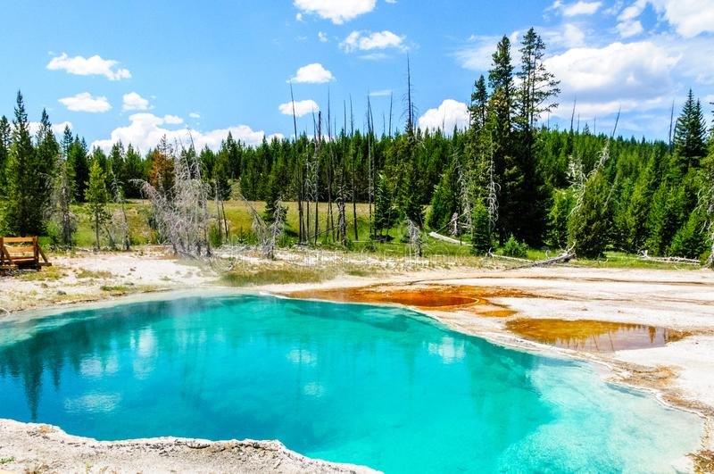 Clear lakes at West Thumb. Hot springs in the West Thumb area in Yellowstone National Park stock image