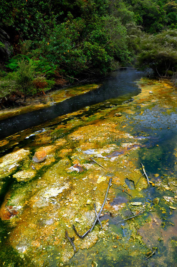 Free Hot Stream With Mineral Sediments, Waimangu Volcan Stock Images - 15986274