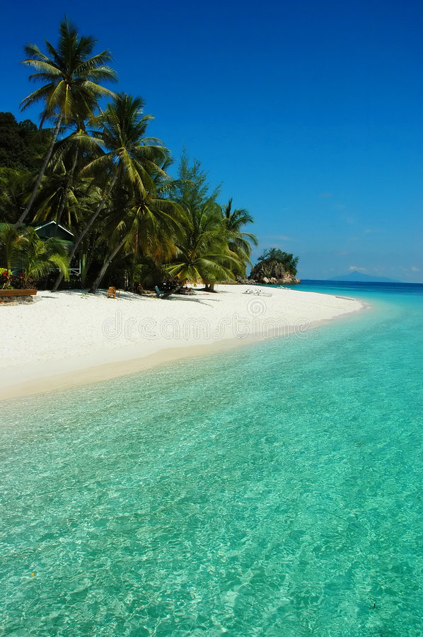 Download Hot summer beach stock photo. Image of water, white, green - 2500366