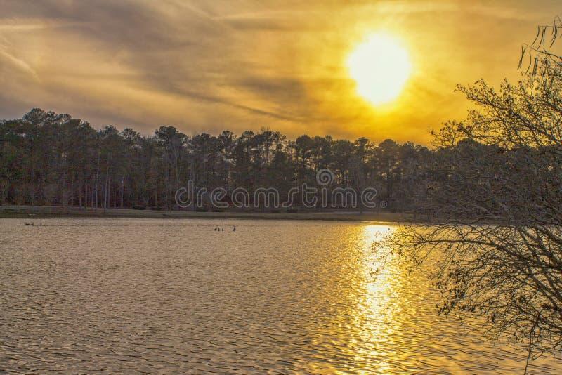 Hot Summer Day op het meer stock afbeeldingen