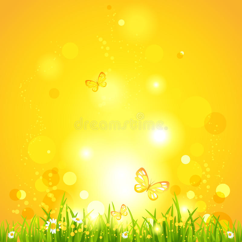 Hot summer evening. Nature background with space for text stock illustration